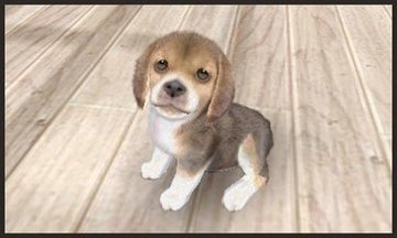 Nintendogs and Cats kaufen